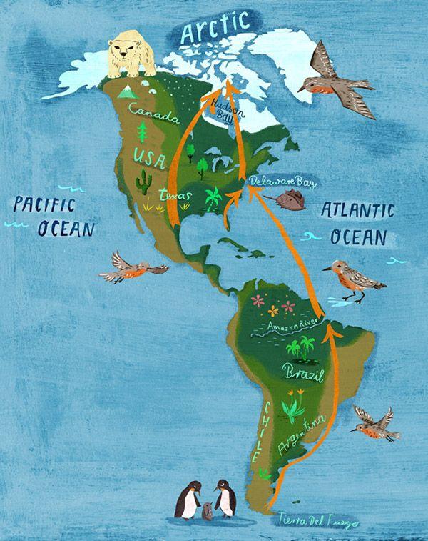 Wellesley mag map illustration on Behance