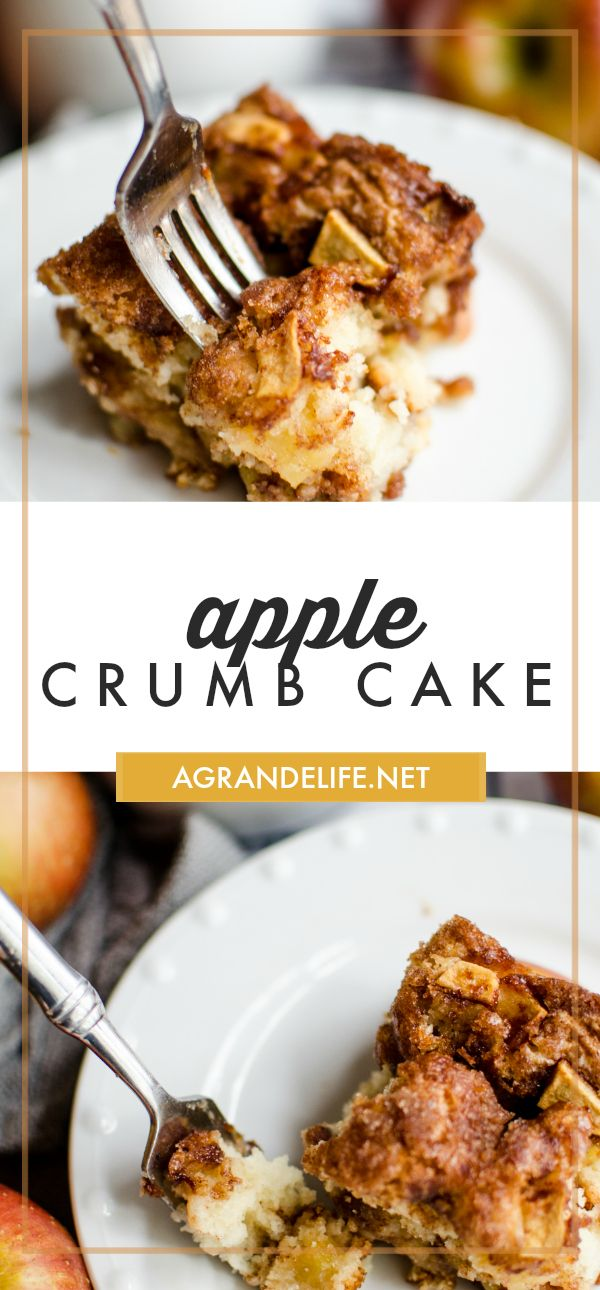 This apple crumb cake is the perfect companion for your ...