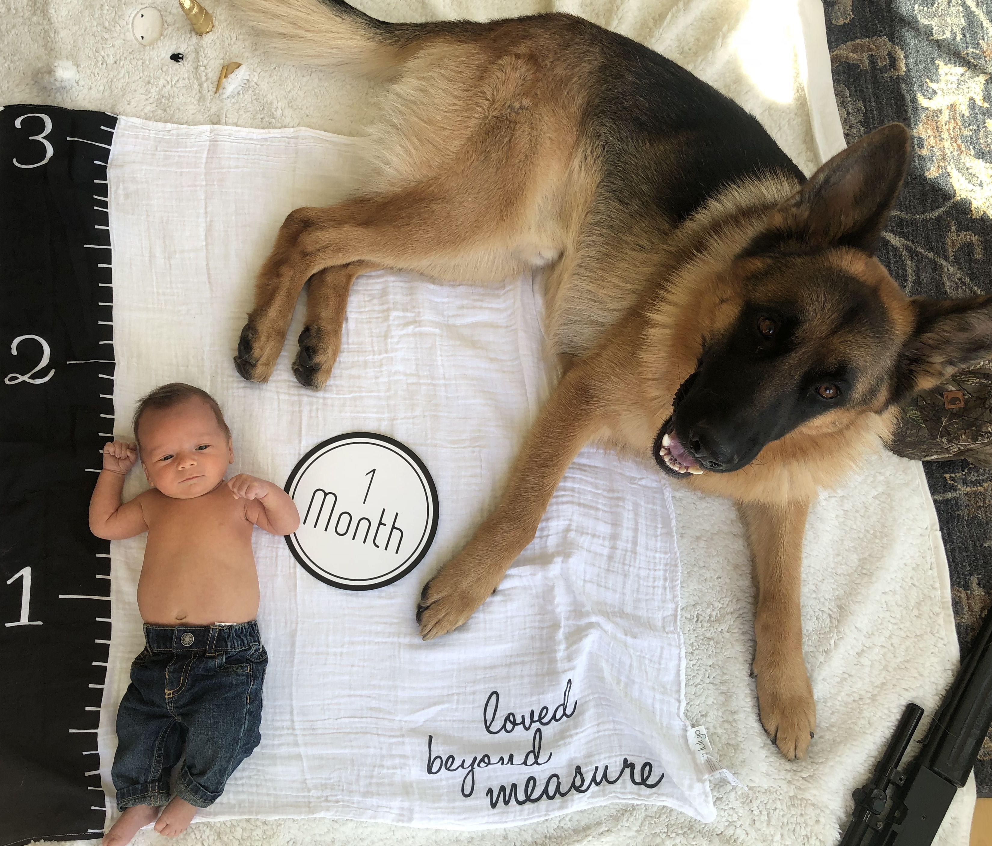 One Month Baby Growth Chart Boy And German Shepherd Dog Baby