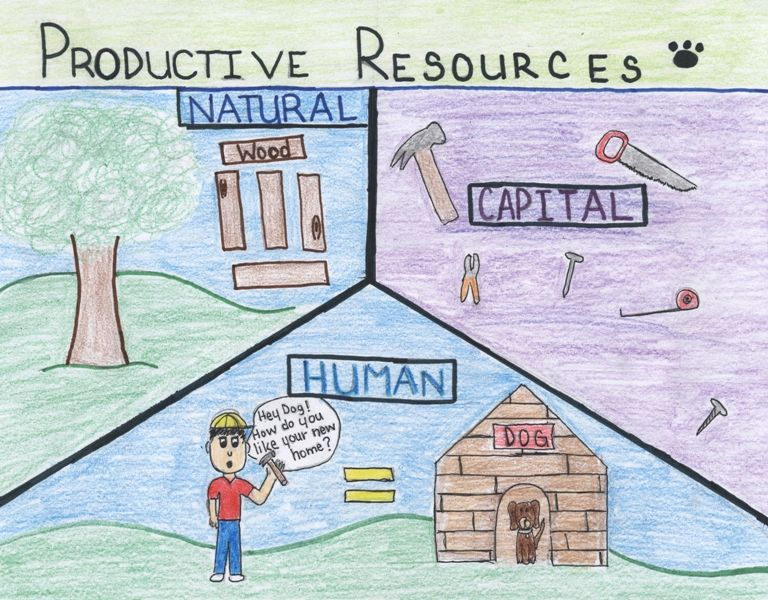opportunity cost Google Search Natural resources