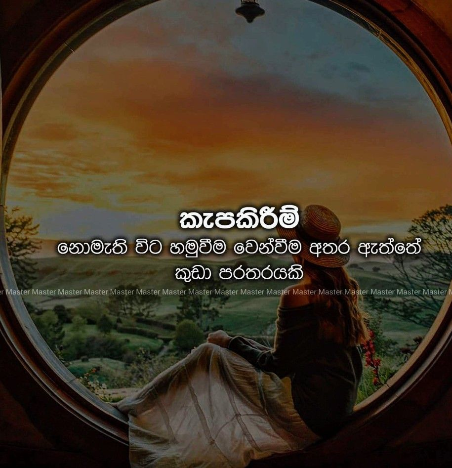 Pin By Fathima Nuh On Sinhala Quotes Pinterest Love Quotes Life