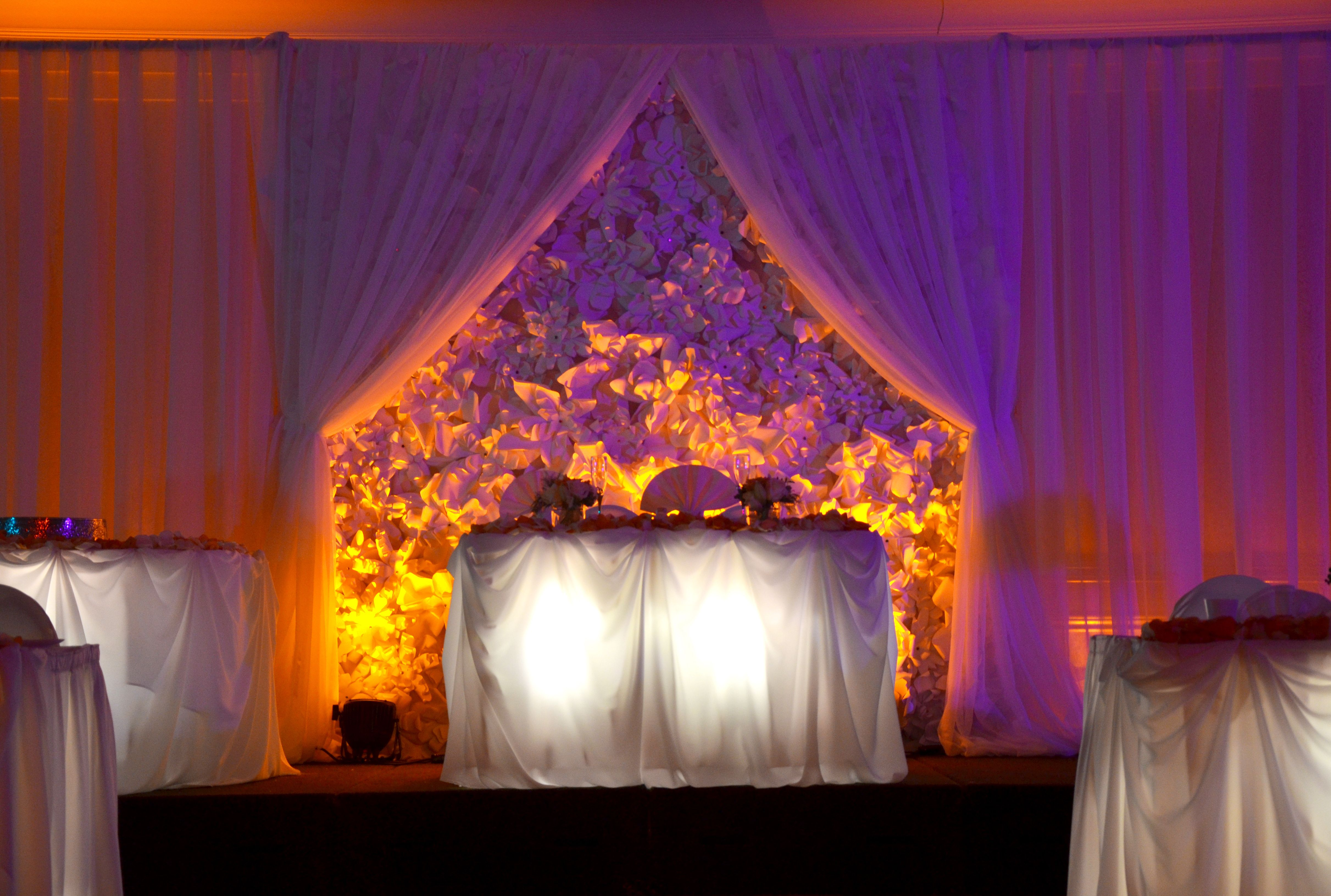 Paper flower backdrop with lighting completes this garden wedding.