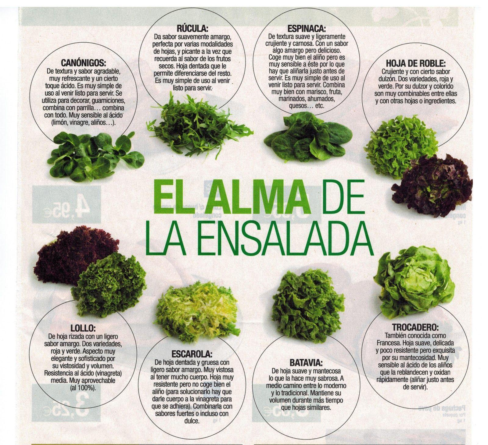 Lechugas Variadas Para Las Ensaladas Tipos De Lechuga Ensaladas Súper Alimentos