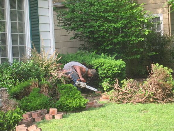 How To Remove Large Bushes In An Hour Front Yard Landscaping Front Yard Flowers Front Yard