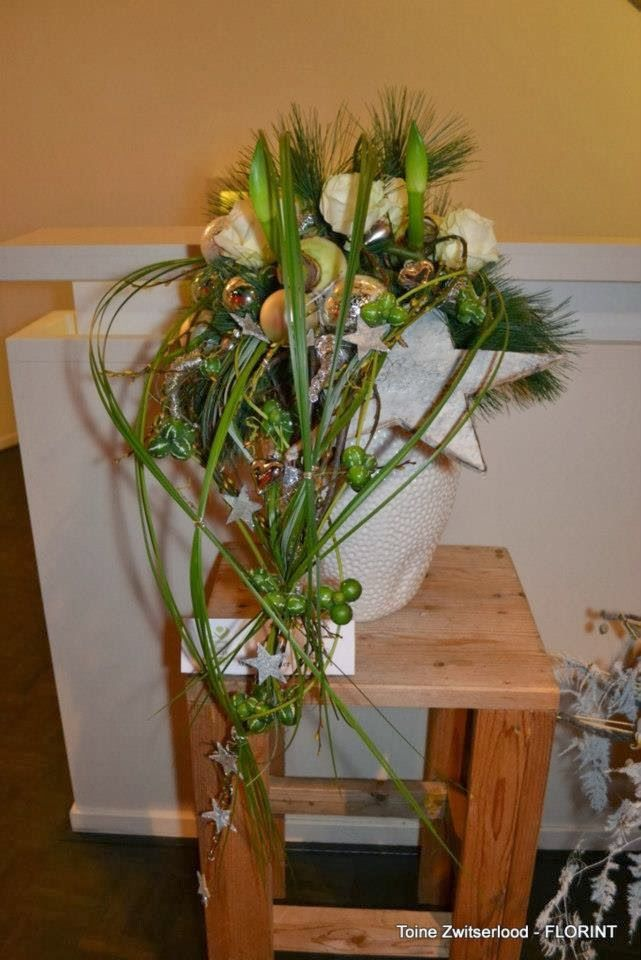 Flower adventure: W świątecznym klimacie | Weihnachtssterne und ...