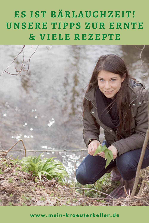 Bärlauch Tipps zum Ernten worauf muss man achten? in