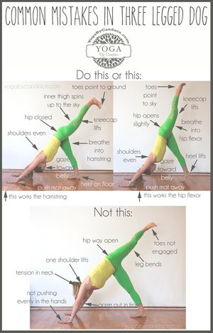 Common Mistakes in Yoga Poses — YOGABYCANDACE