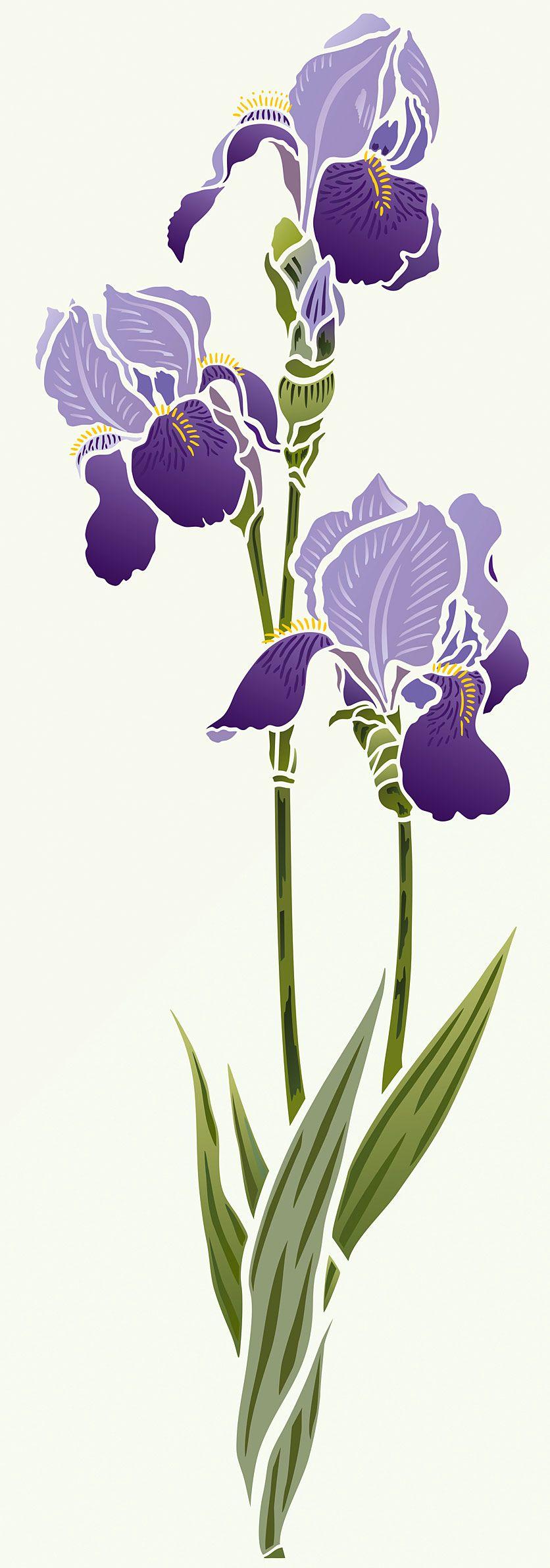 Beautiful Iris flower stencil. 2 sheet designer stencil ...