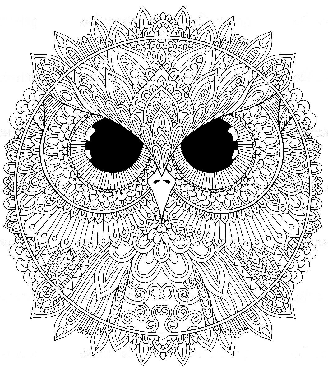 Pin by Elisabeth Quisenberry on Coloring Therapy: Birds ...