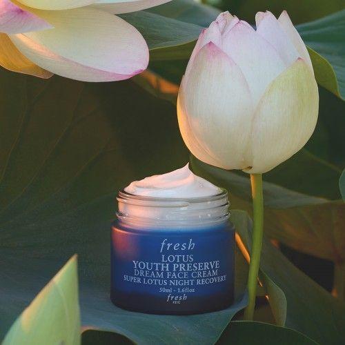 Fresh Lotus Face Cream Review
