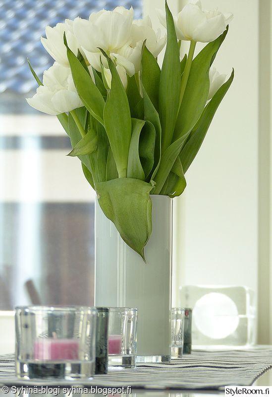 kynttilät,maljakko,kukka,lähikuva,huonekasvi