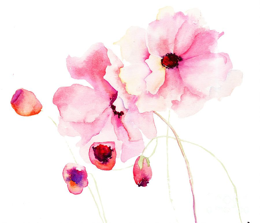 Colorful Pink Flowers By Regina Jershova Painting Fine Art Prints And Posters For