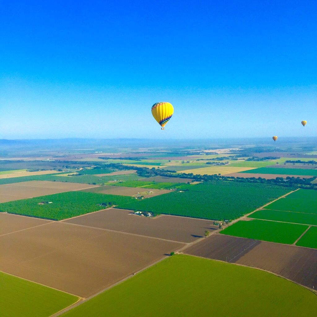 Hot air ballooning over Napa Valley California. Wine country!