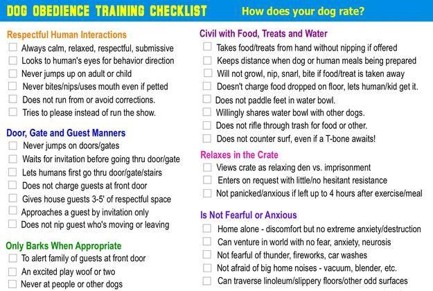Austin Dog Whisperer Obedience Training Checklist Obedience Dog