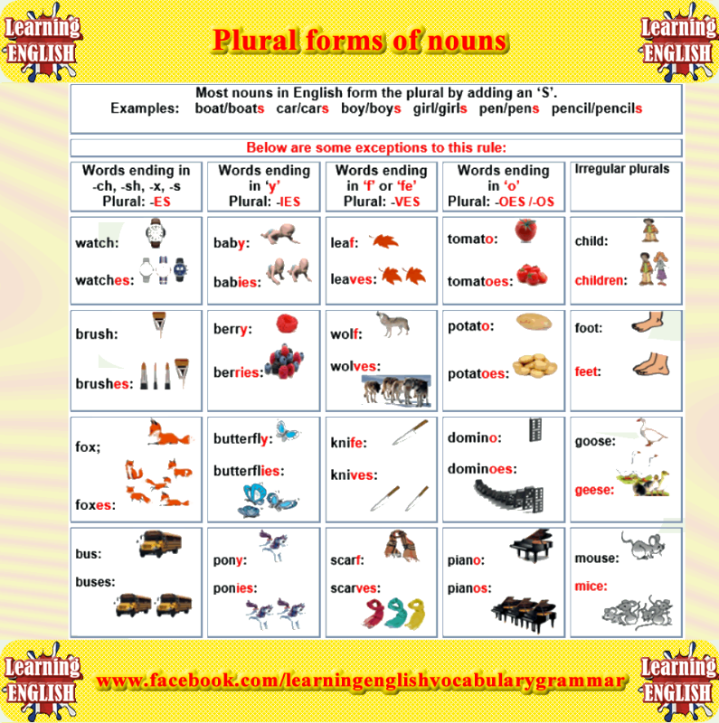 plural form of nouns - learning English grammar | Learning English ...