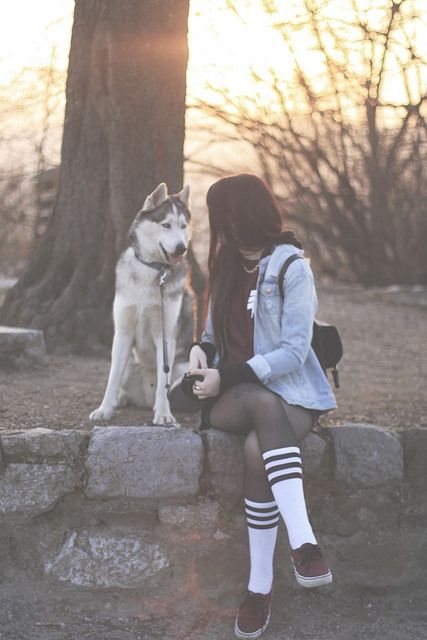 love vans dog photography girl cute style hipster indie outfit ... 6c07a49093b