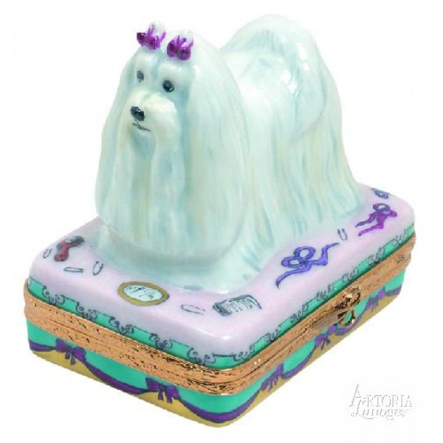 Dogs Maltese Limoges boxes, Hand painted porcelain