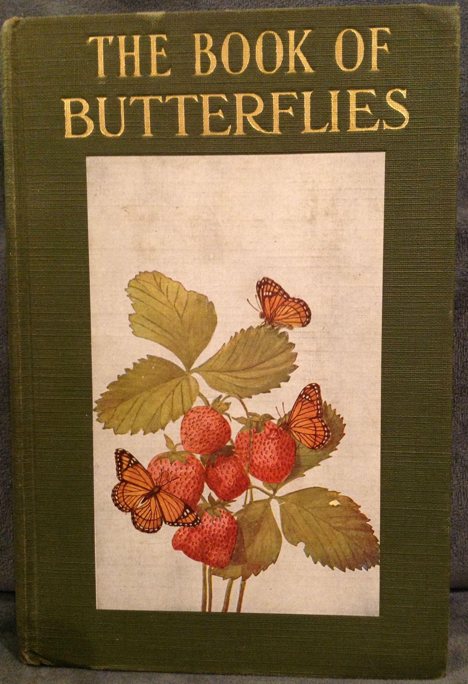 Little Nature Library, The Book of Butterflies, Butterflies Worth ...
