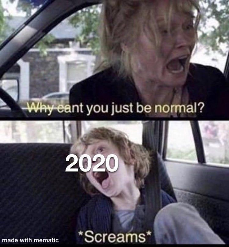 32 Memes That Prove 2020 Is The Worst Year We Ve Had In A While Stupid Funny Memes Funny Memes Funny Relatable Memes