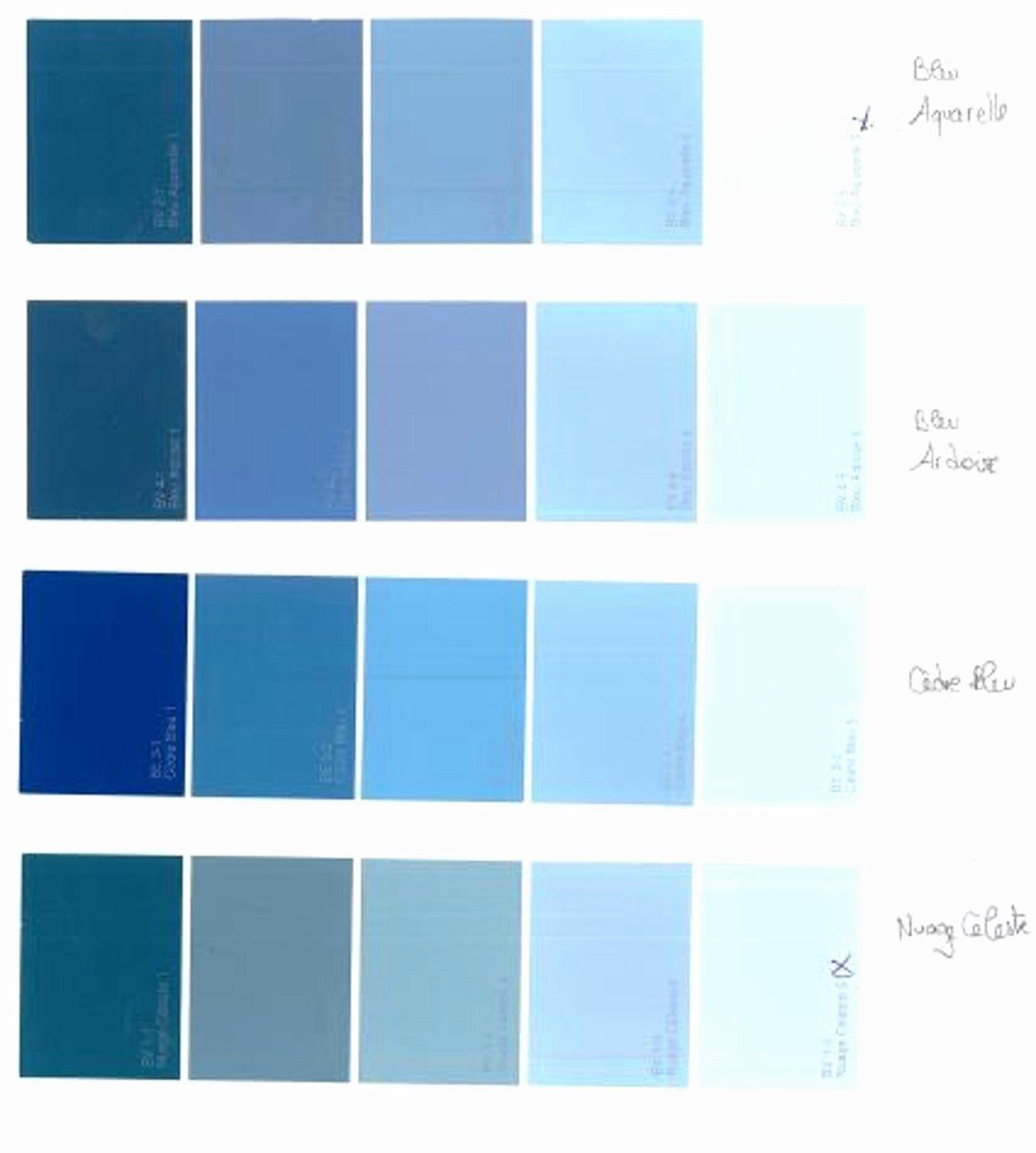 Peinture Gris Bleuté Clair palette de couleur peinture gris delightful couleur gris