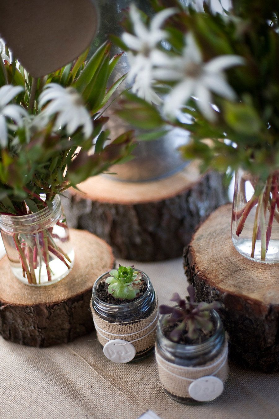decorazione con piante e legno - Photography By / http://dcimages.com.au,  Floral Design By / http://chellowdeen.com.au