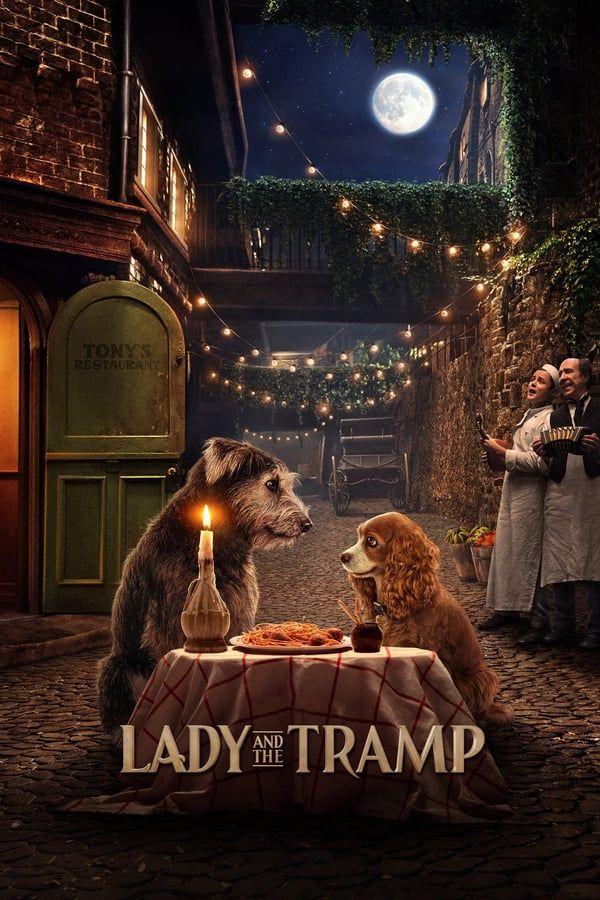 ทรามวัยกับไอ้ตูบ (Lady and the Tramp) 2019 เต็มเรื่อง HD