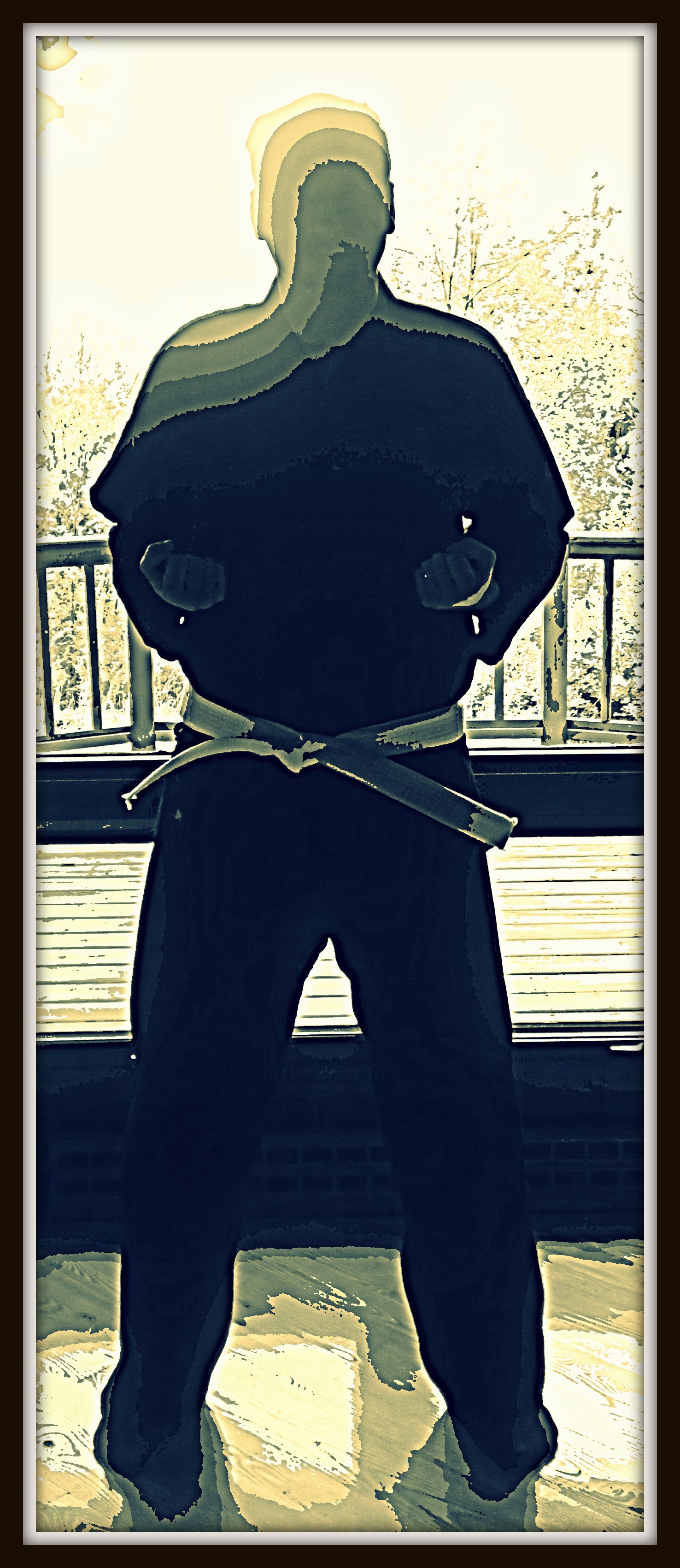 41+ Elite martial arts richmond ideas
