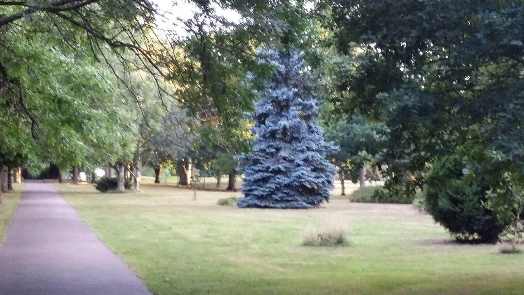 28++ Beckenham place park golf viral
