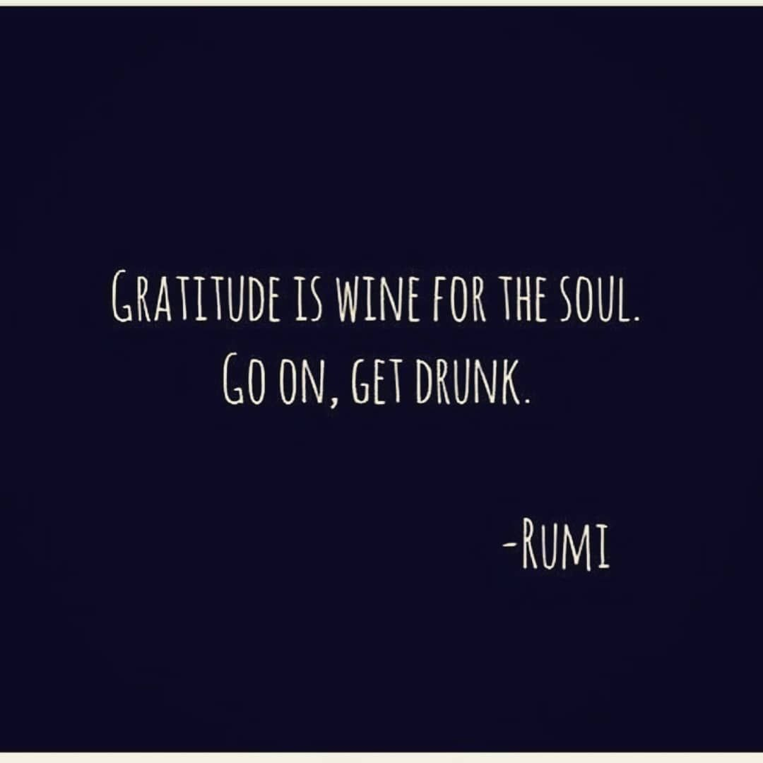 Image result for gratitude is good for the soul, go on get drunk