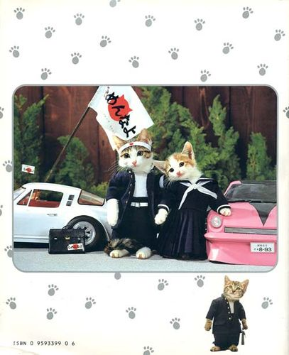 80's Japanese cats.