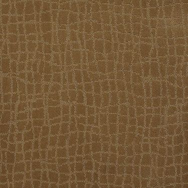 Patterned Carpets Tone On Carpeting