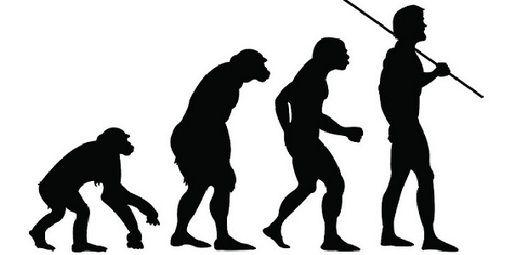 De prijs van onze evolutie: 'Ingenieur had menselijk lichaam heel anders ontworpen'  De menselijke evolutie laat zijn sporen achter. Op twee voeten lopen in plaats van op vier handen is niet alleen handig, het heeft ook negatieve fysieke gevolgen. Van zere voeten tot aan rugpijn. De schuld kunt u afschuiven op de evolutie.