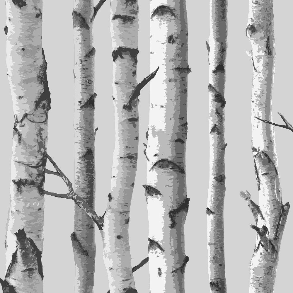 I Love Wallpaper Birch Tree Wallpaper Soft Grey / White (ILW980070) -  Sample