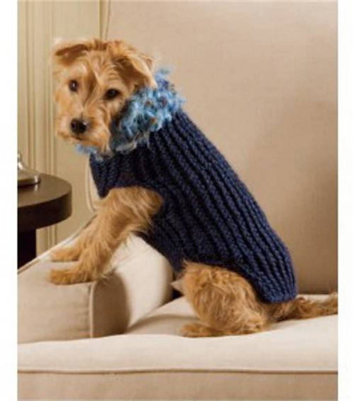 Easy Knit Dog Sweater Patterns Free