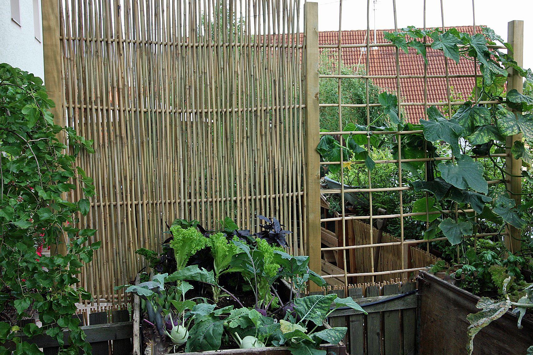 Gestalten mit bambusst ben balcony pinterest garten for Rankgitter dekorieren