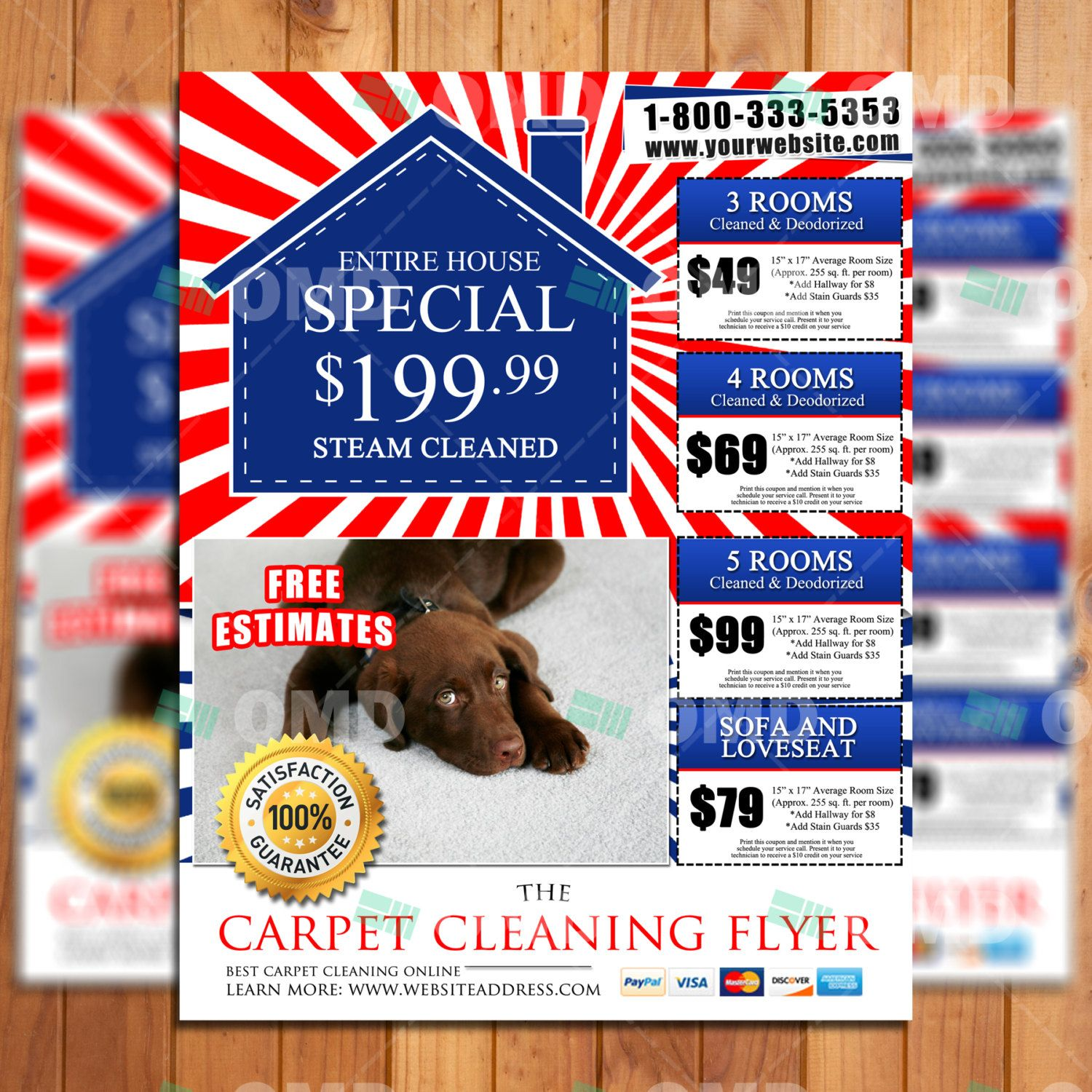Custom Carpet Cleaning Marketing Flyer - Ready in 24 Hours ...