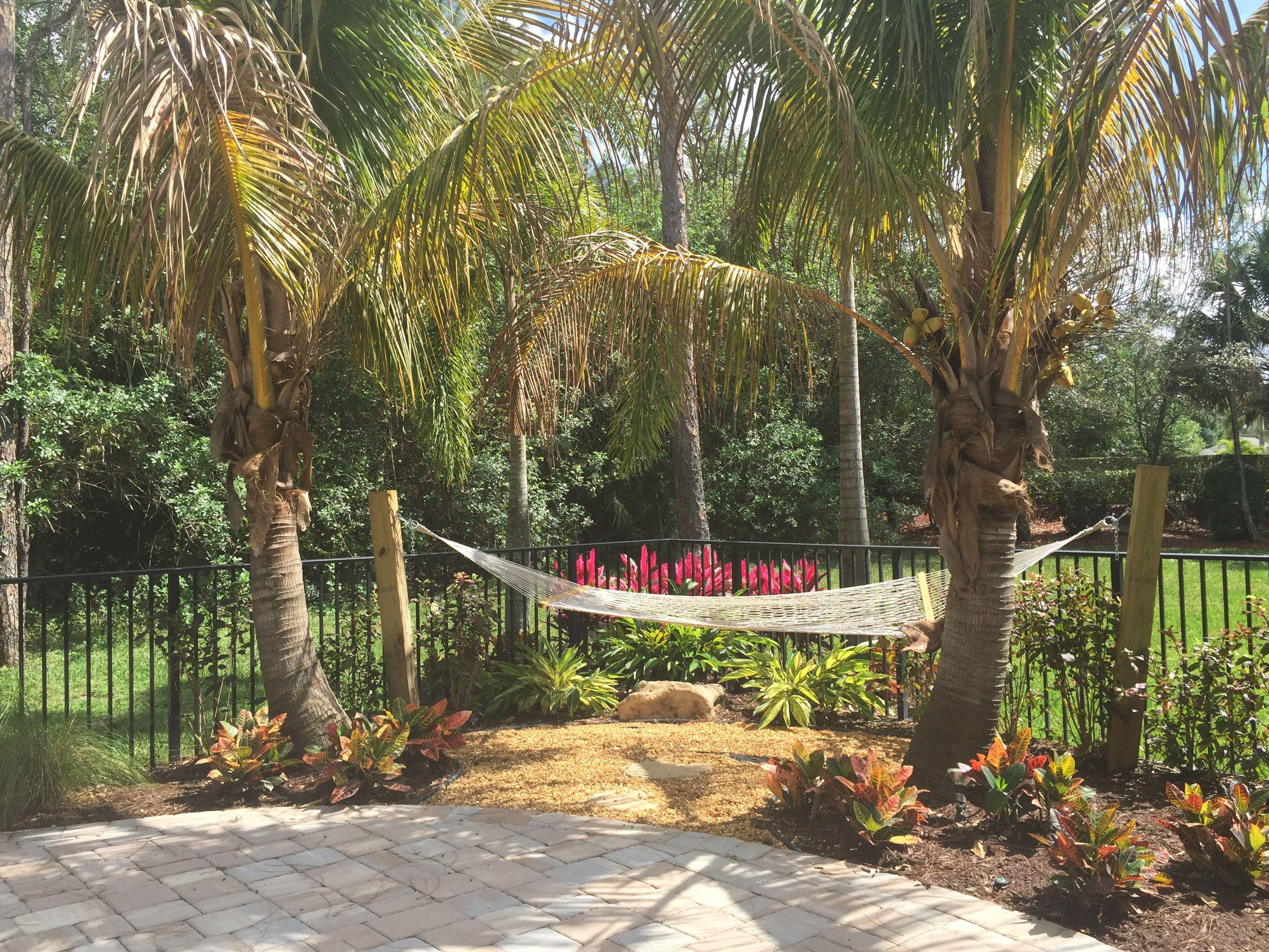 Hammock between Coconut Palms   Tropical Garden Design   Pinterest ...