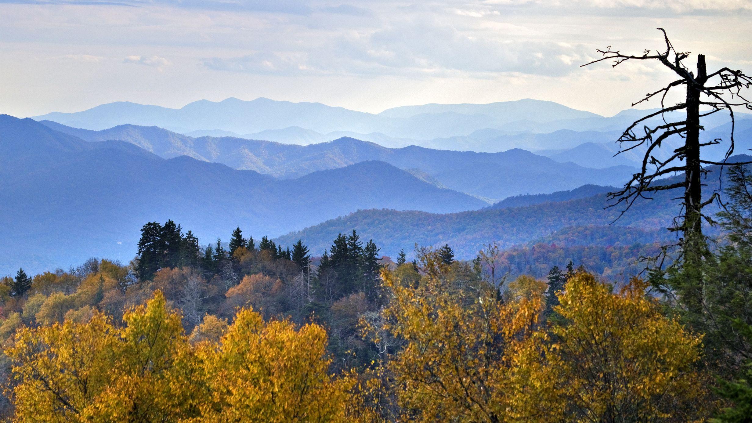 Wallpapers Catalogue Com River Of Fog Great Smoky Mountains Scenic Smoky Mountains Great Smoky Mountains