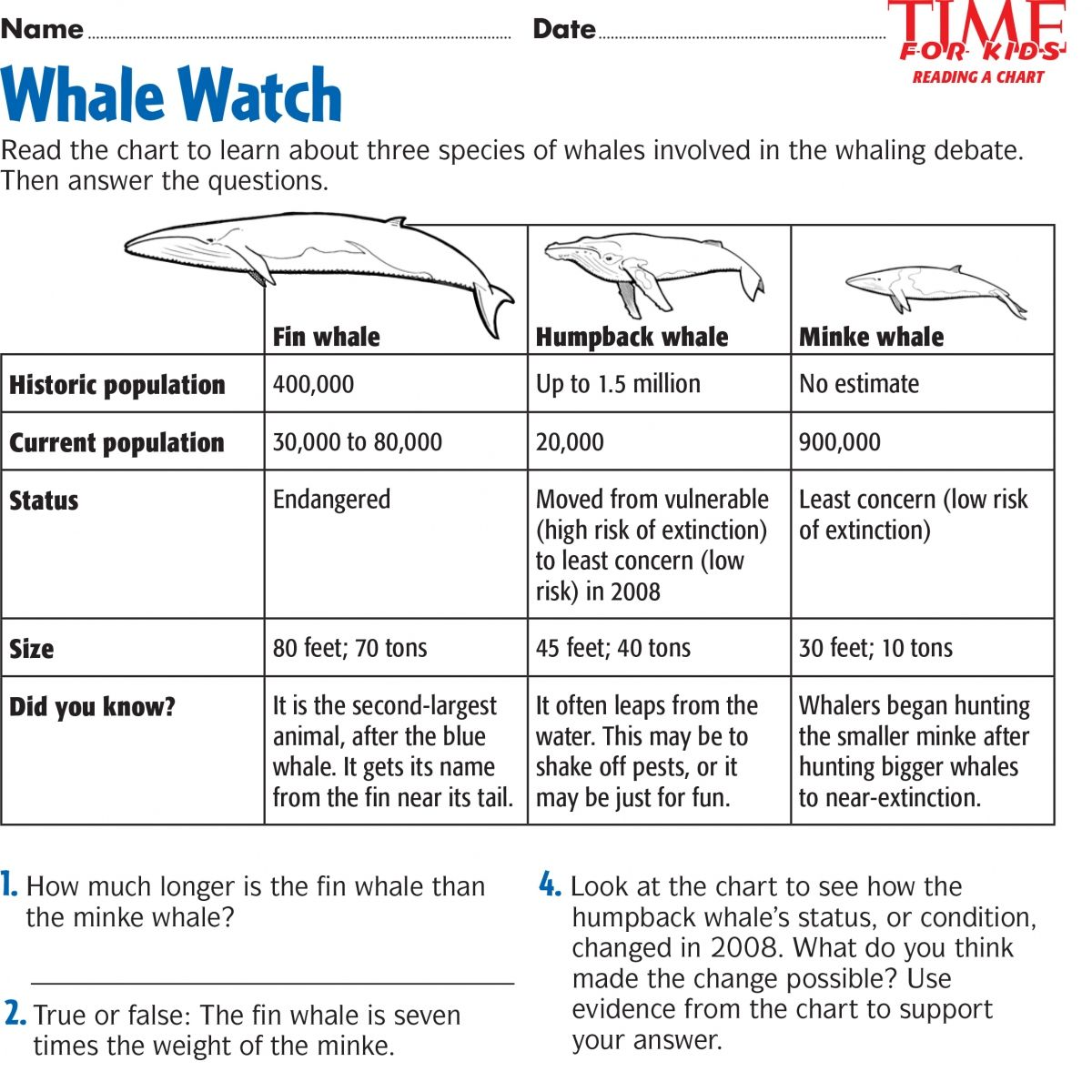 Whale Watch Students Read A Chart About Three Species Of Whales And Answer Questions