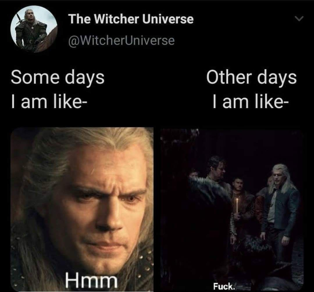 Pin By Diana Slor On The Witcher The Witcher The Witcher Geralt Memes