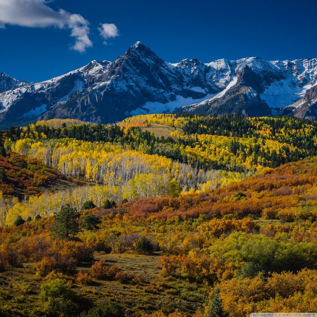 Mountain Landscape In Aspen Colorado HD