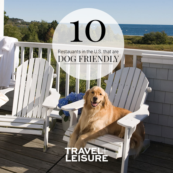 The Most Dog Friendly Restaurants In The U S Dog Friends