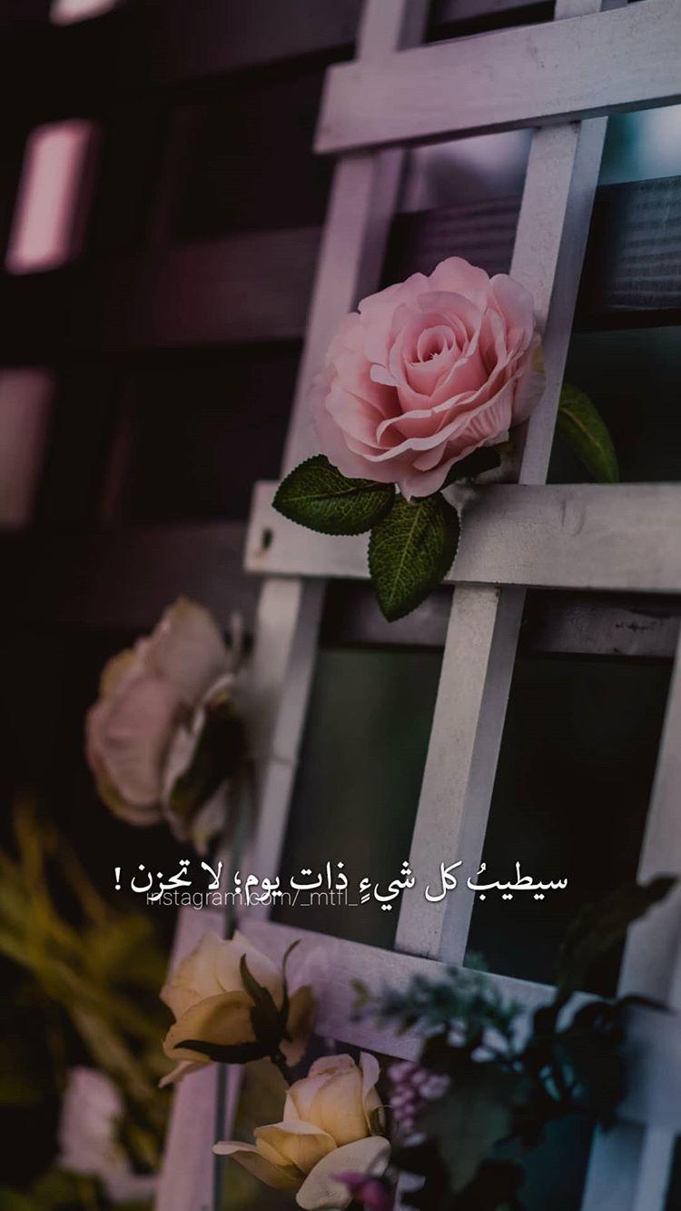 شكرا لمن قالت لي هذا ثم بكت بحبك يا ليو ميستاهلوشي Iphone Wallpaper Quotes Love Arabic Quotes Love Quotes Photos