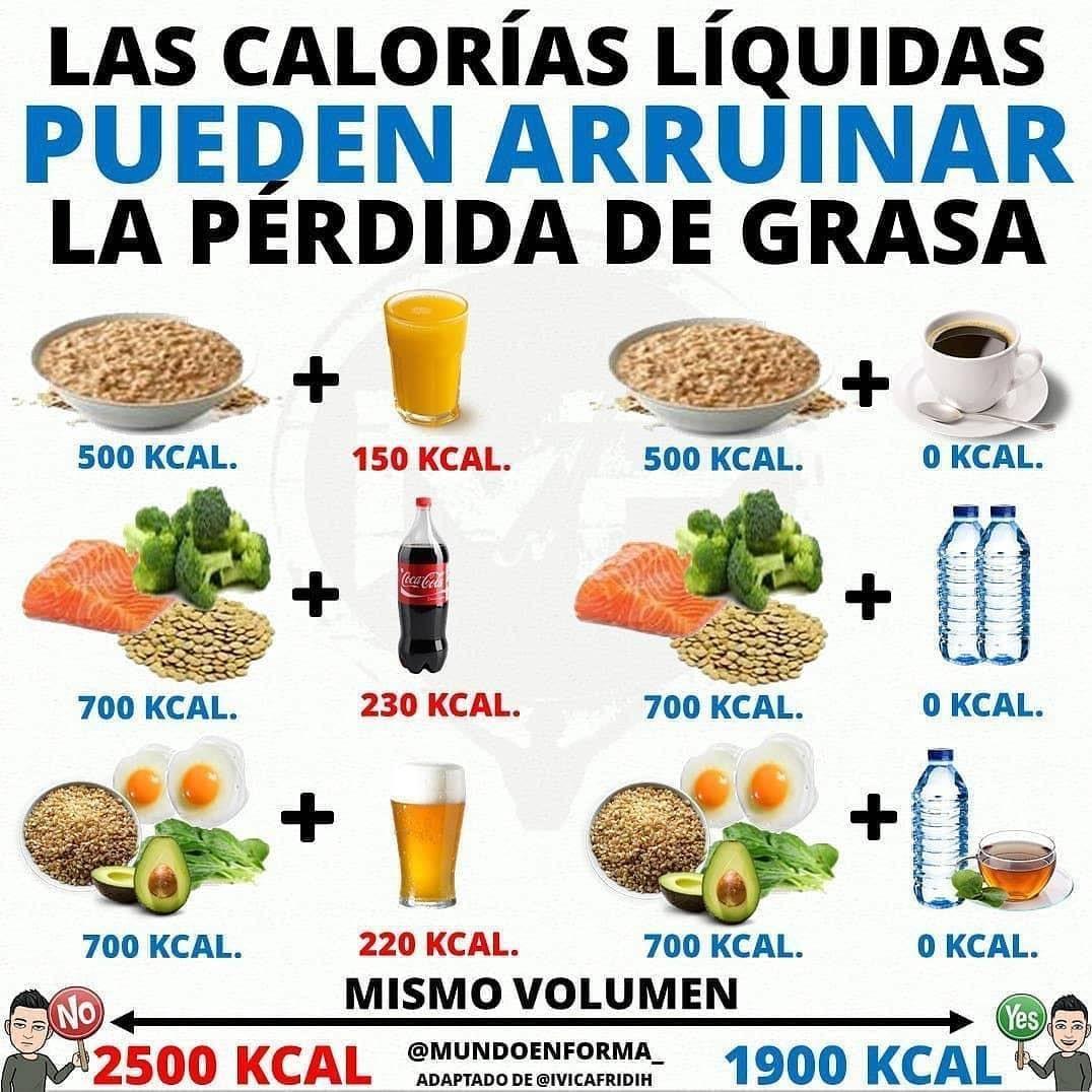 almuerzo de 500 calorias