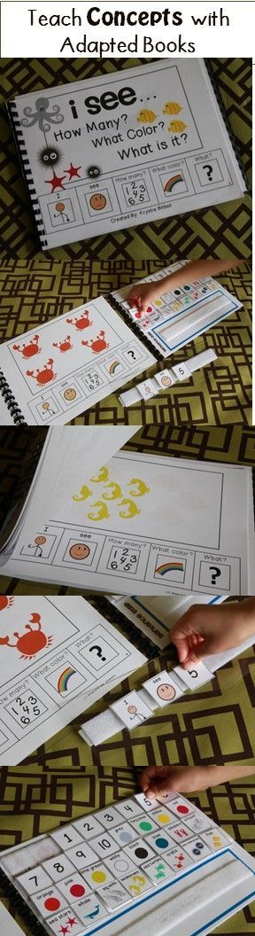 Teach your students to answer the questions: How many?  What color?  What is it?  With adapted books.