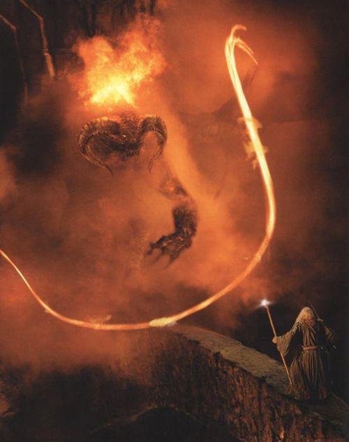 No siempre puedes correr, algunas veces tienes que detenerte, reunir todo tu valor y enfrentar tus miedos    ~ Gandalf ~