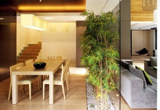 Zaaranżowanie małego ogródka wewnątrz pomieszczenia uatrakcyjni je i
