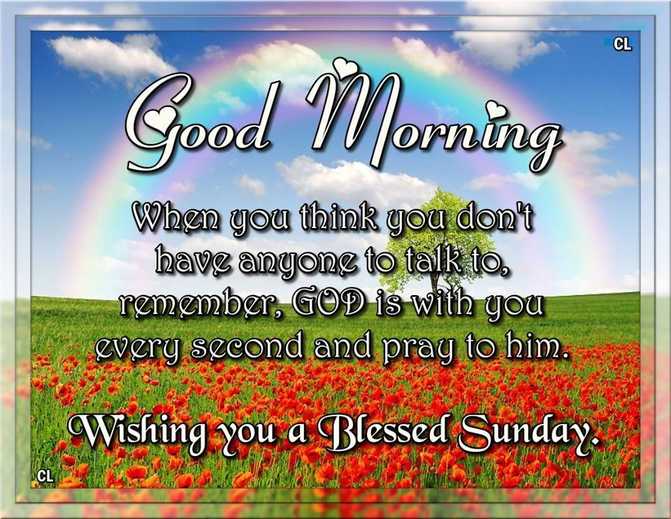 Good morning wishing you a blessed sunday sunday humor good morning wishing you a blessed sunday good morning sunday sunday quotes good morning quotes happy sunday sunday quote happy sunday quotes good morning voltagebd Gallery