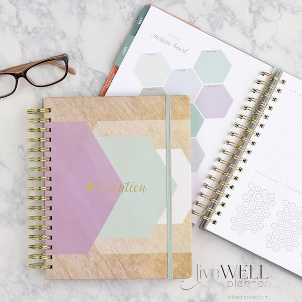I am DESPERATE for this planner for XMas/Birthday. Aside from a cricut... pretty much nothing else I REALLY want.
