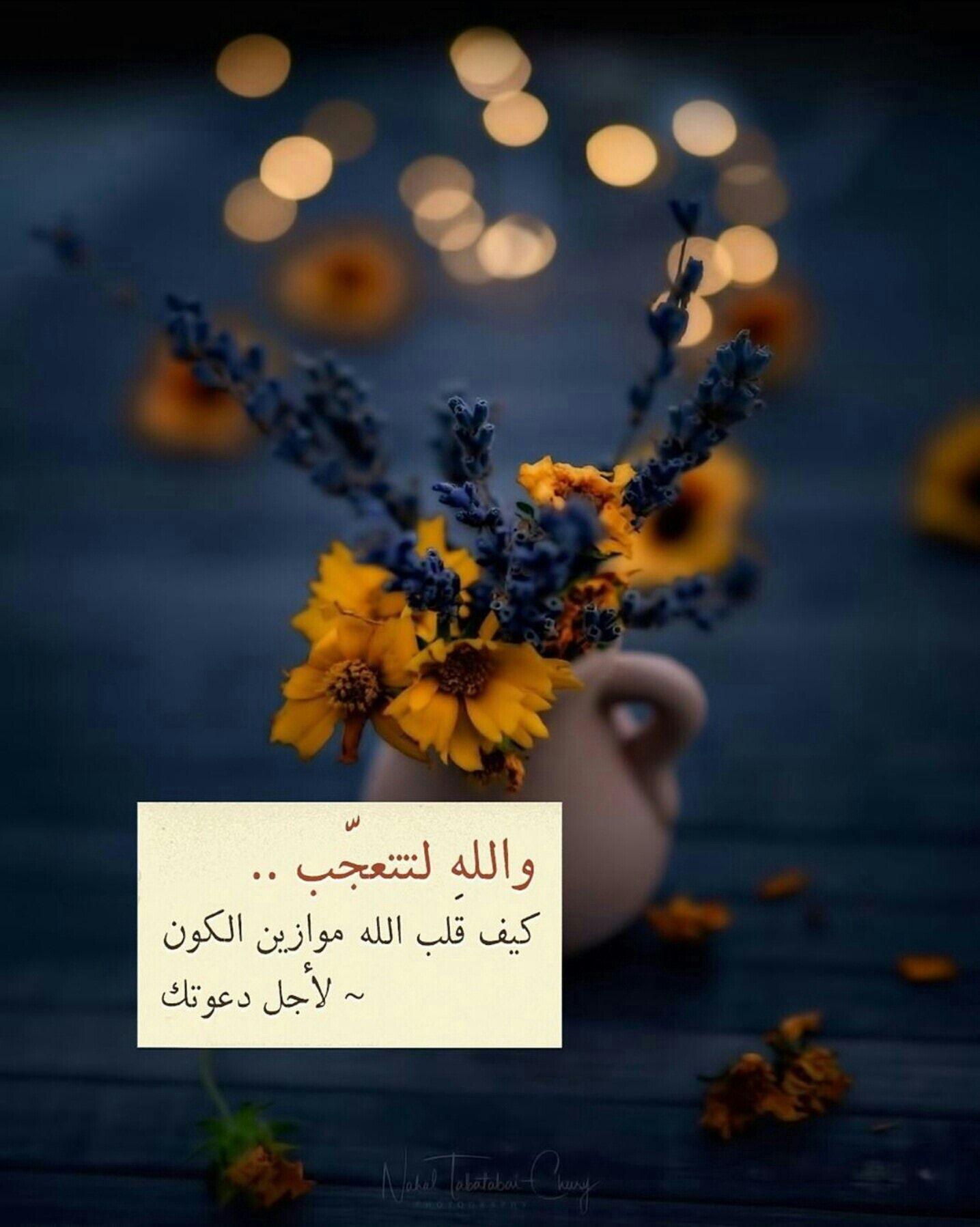 خواطر اسلامية بالصور Islamic Quotes Wallpaper Quran Quotes Inspirational Islamic Quotes Quran